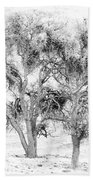 Mistletoe Tree In Black And  White Beach Towel