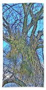 Mistletoe Tree Beach Towel