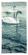 Misty Blue Swans Beach Towel