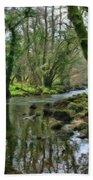 Misty Day On River Teign - P4a16017 Beach Towel