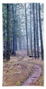 Misty Morning Trail In The Woods Beach Towel