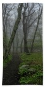 Misty Path Beach Sheet