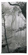 Misty Woods, Juniper Beach Towel