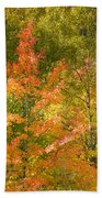 Mixed Autumn Beach Towel