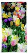 Mixed Tulips In Bloom  Beach Towel
