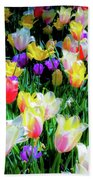 Mixed Tulips In Bloom  Beach Sheet