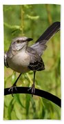 Mockingbird Beach Towel