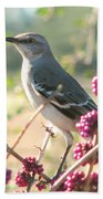 Mockingbird Heaven Beach Towel