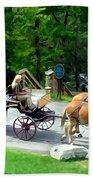 Mohonk Carriage Tour Beach Sheet