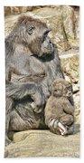 Momma And Baby Gorilla Beach Towel