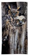 Momma And Baby Owl Beach Sheet