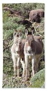 Mommy And Baby Burro Beach Towel