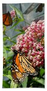 Monarch Arc Beach Towel