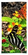 Monarch Butterfly And Zebra Butterfly Beach Towel