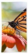 Monarch Butterfly Beach Towel