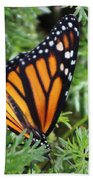 Monarch Butterfly In Lush Leaves Beach Towel