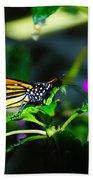 Monarch Buttefly Beach Towel