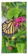 Monarch Butterfly On A Flower  Beach Sheet