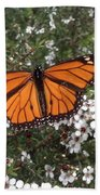 Monarch Butterfly On New Zealand Teatree Bush Beach Towel