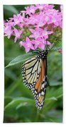 Monarch Butterfly On Pink Flowers  Beach Sheet