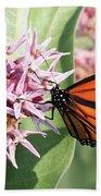 Monarch Butterfly Showy Milkweed Bloom Beach Towel
