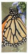 Monarch Butterfly Textured Background Beach Sheet