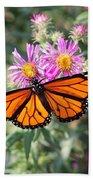 Monarch On Blanket Flower Beach Towel