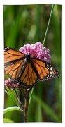 Monarch On Joe Pye Beach Towel