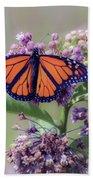 Monarch On The Milkweed Beach Towel