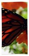 Monarch Series 8 Beach Towel