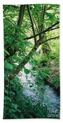 Monet's Garden Stream Beach Towel