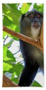 Monkey Beach Towel
