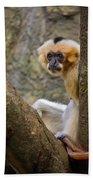 Monkey Chillin Beach Towel