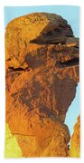 Monkey Face Pillar At Smith Rock Closeup Beach Towel