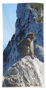 Monkey In Gibraltar Beach Towel