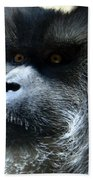 Monkey Stare Beach Towel