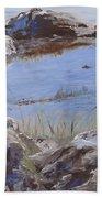 Mono Lake Beach Sheet
