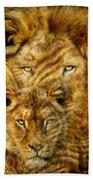 Moods Of Africa - Lions 2 Beach Towel