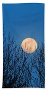 Moon Rising In The Trees Beach Towel