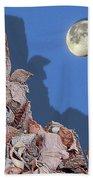 Moon Shadow Beach Towel