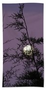 Moon Trees Beach Towel