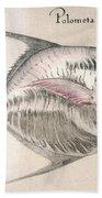 Moonfish, 1585 Beach Towel
