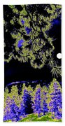 Moonlit High Country Beach Towel