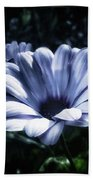 Moonlit Petals. From The Beautiful Beach Towel by Mr Photojimsf
