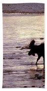 Moose Crossing Beach Towel