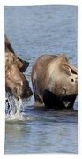 Moose Mama With Her Calf Beach Towel