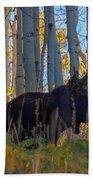 Moosey Beach Towel