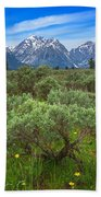 Moran Meadows Beach Towel