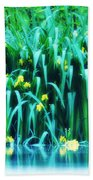 Morning By The Pond Beach Towel