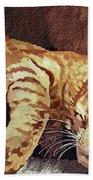 Morning Cat Beach Towel